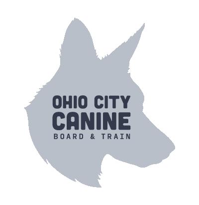 OCC Board & train Dog graphic in white background